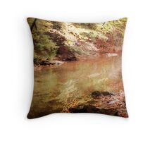 Gentle Rush Throw Pillow