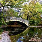 Autumn's Reflection by wiscbackroadz