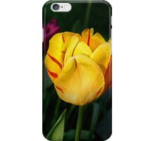 Shaded Beauty iPhone Case/Skin