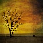 Tree Life by Ben Reynolds