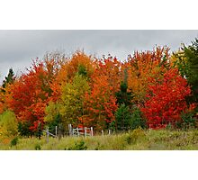 Nova Scotia Fall Photographic Print