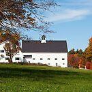 Intrepid Farm in Autumn by Monica M. Scanlan