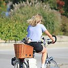 Bicycle Built For Two? by NewfieKeith