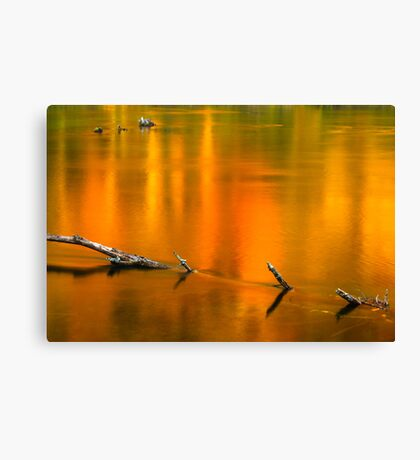 Autumn Reflections on the Holston River Canvas Print