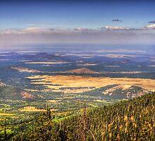 View From The Top by Saija  Lehtonen