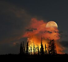 1987 by peter holme III