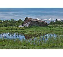 Collapsed Alberta Barn Photographic Print