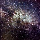 Milky Way near Cygnus  by Greg Booher
