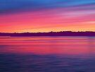 Rouge Dawn by David Alexander Elder