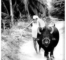 indain farmer by artsyashi