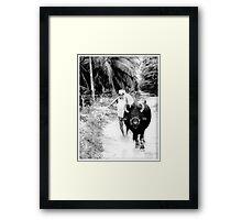 indain farmer Framed Print