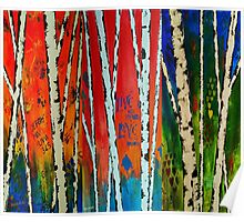 Painted Autumn Birch Trees Poster