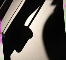 Abstract Shadow by Chris Cardwell