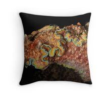 Girdled Chromodoris Throw Pillow