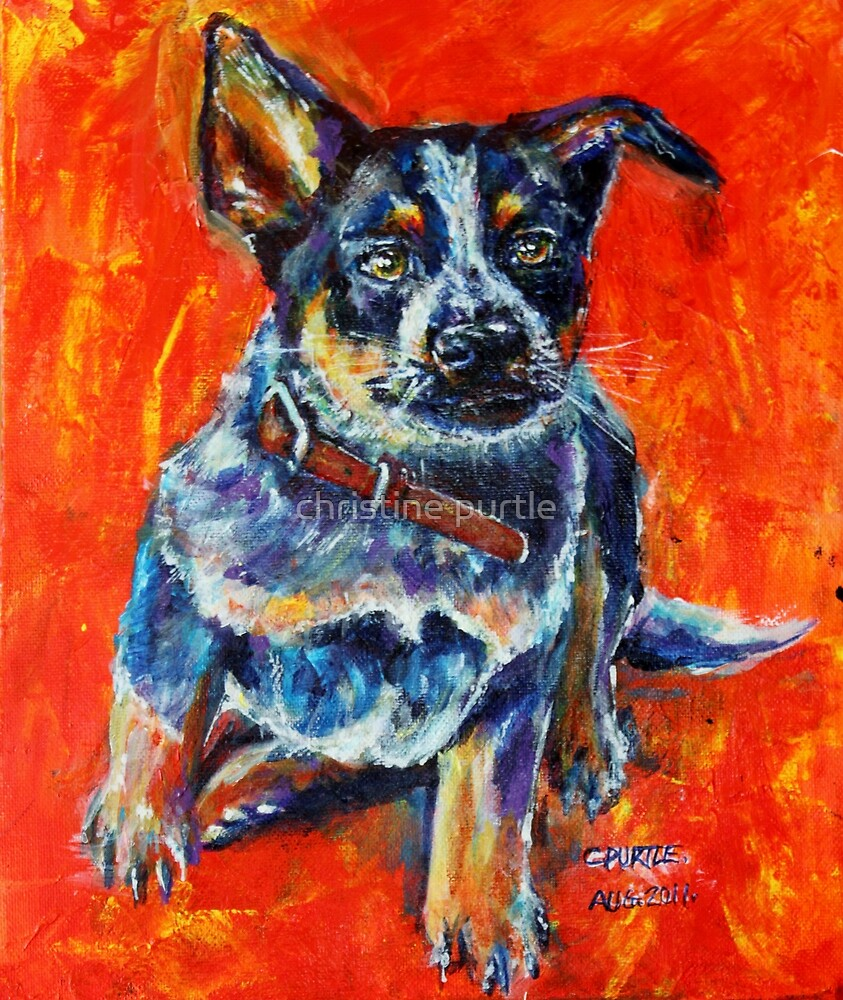 Maggie May by christine purtle