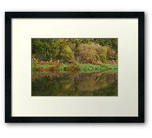 Reflections, River Nene. Framed Print