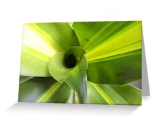 nature's advertisement:  green  is   fresh ! Greeting Card