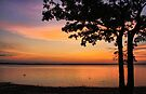 The End Of A Perfect Day by Carolyn  Fletcher