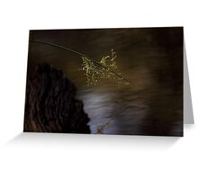 Reed Across the Water-8759 Greeting Card