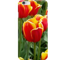 Red Yellow Tulips iPhone cover iPhone Case/Skin