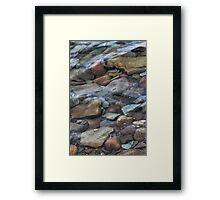 Along the Shoreline Framed Print