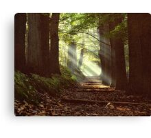 Devil's mountain light Canvas Print