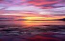 Golden Seam of a Sunset by David Alexander Elder