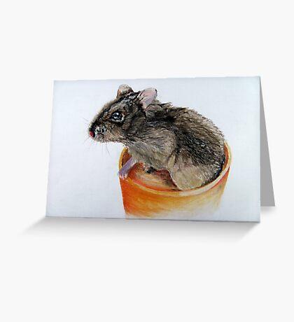 Dwarf Russian Hamster Greeting Card