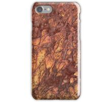 Rusty Paint iphone case iPhone Case/Skin