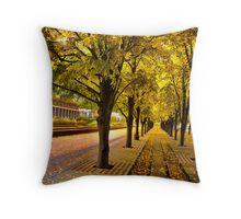 Boston, fall mood Throw Pillow