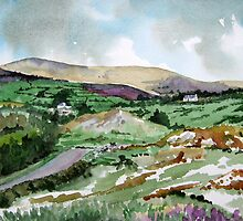 """Mountains & Moors"" - Ballymakeera, County Cork, Ireland by Timothy Smith"