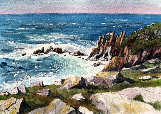 """""""Fulmars' Freedom"""" - Cornish Coast by Timothy Smith"""