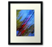 Red and Green on Blue Framed Print