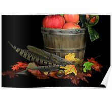 Fall Pheasant Feathers Poster
