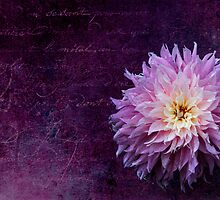 Floral Texture by Ann Garrett