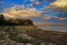 A Beachy Morning by Carolyn  Fletcher