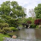 A bridge and trees in the garden by Paula Betz
