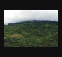 Cloudy Tea Farm One Piece - Long Sleeve