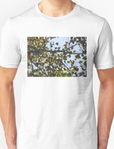 Fall Dream T-Shirt