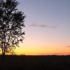 Daybreak by BioticCrisis