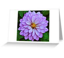 Natues Gift, God Creation #2 Greeting Card