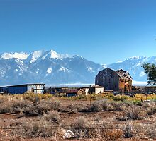 Old homestead in San Luis Valley Colorado by Merja Waters