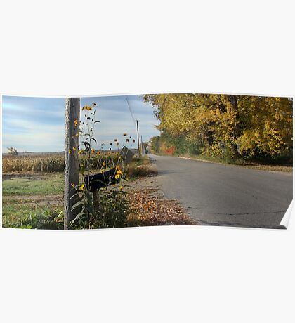 Autumn - Country Road Poster
