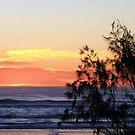 beach sunrise ..iphone case  by gail woodbury