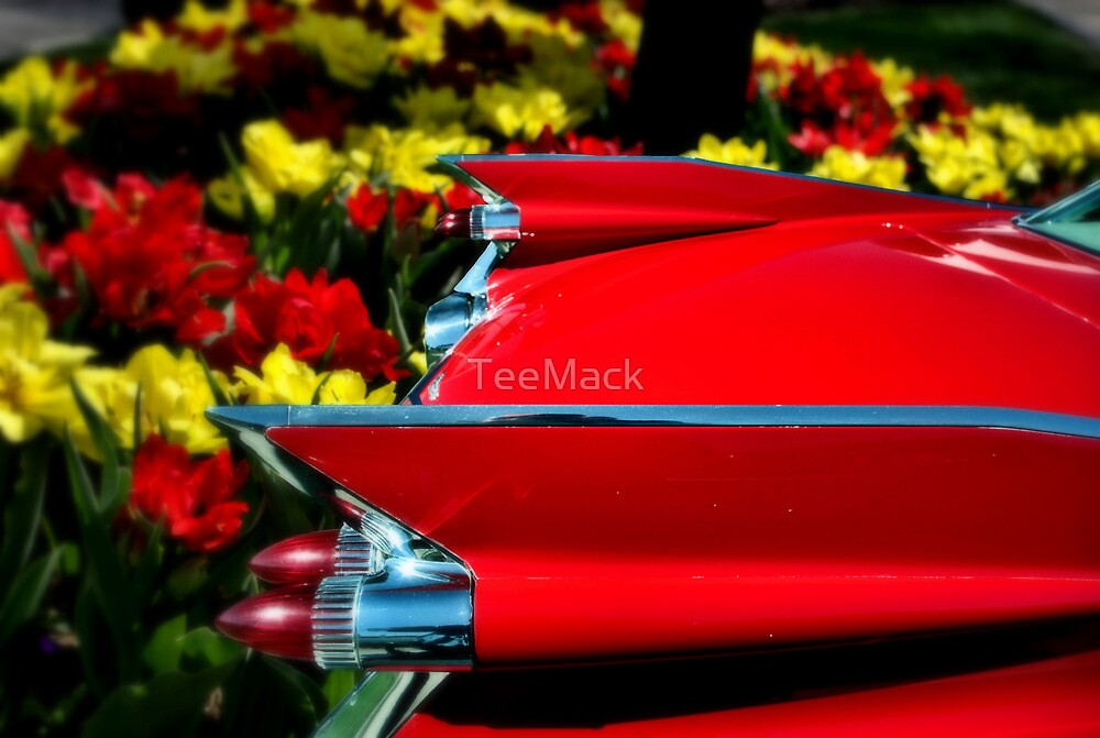 "1959 Cadillac ""Tulips and Tail Lights"" by TeeMack"