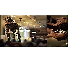 T-Rex Two   Photographic Print