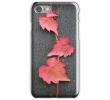 Baby Boston Ivy Leaves iPhone Case/Skin