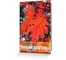 Firey Red Fall Leaves Thanksgiving Greeting Card