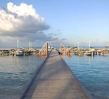 Hardicurrari Wharf Palm Beach Aruba  by John  Kapusta
