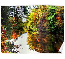 Duck Creek in the Fall  Poster